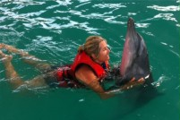 swimming-with-dolphin-bali-08