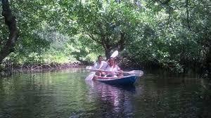 images kayak